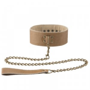 Leather Collar w Leash